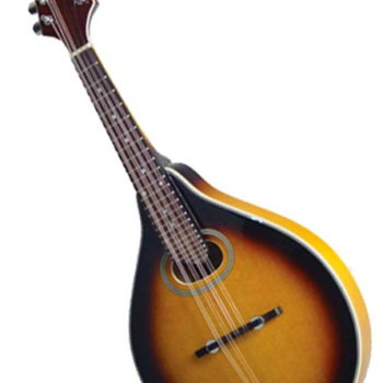 Savannah SA-110 Mandolin